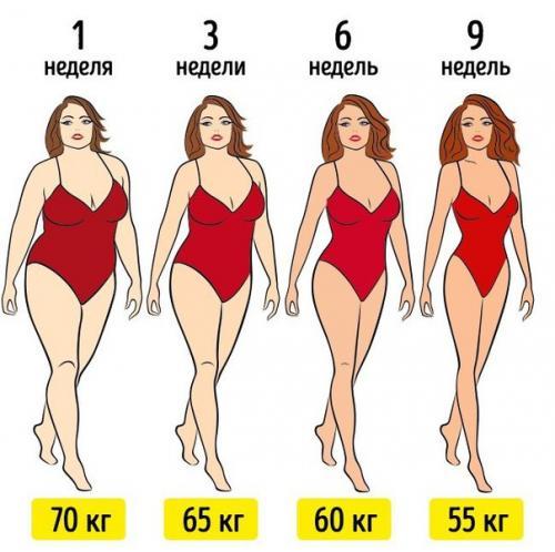 Безуглеводная диета. Ожидаемая потеря веса около 15 кг без.