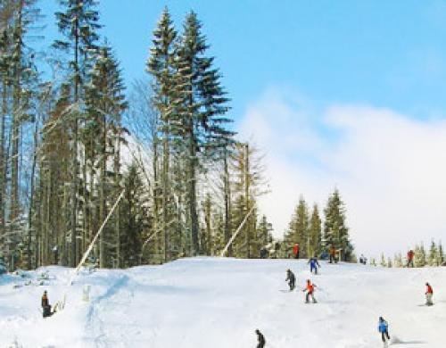 Польза для здоровья человека от катание на лыжах. Польза катания на горных лыжах.