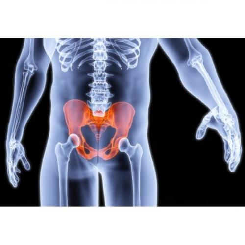 Упражнения улучшающие кровообращение в малом тазу у мужчин. Улучшение кровообращения в малом тазу
