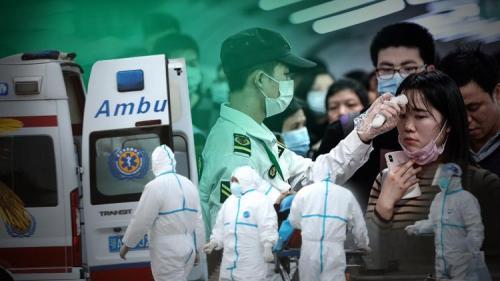 Новый вирус в Китае 2020 хантавирус. Хантавирус в Китае в 2020 году и что это такое