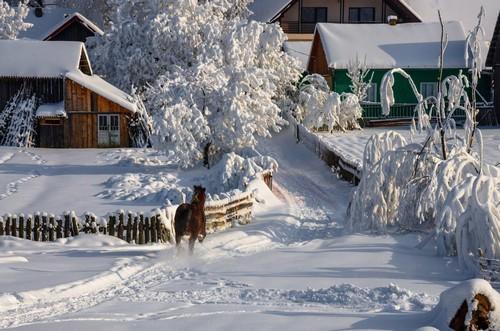 Домик в деревне зимой. Отдых в деревне зимой — 10 плюсов и 5 главных минусов