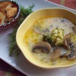 10 рецептов сырных супов.